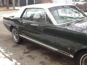 Ford : Mustang Gt image 5