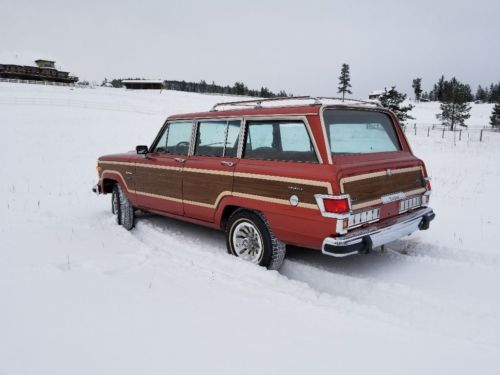 1980 Jeep Wagoneer Limited image 1