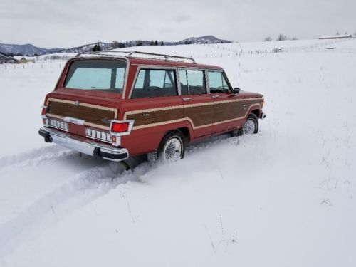 1980 Jeep Wagoneer Limited image 3